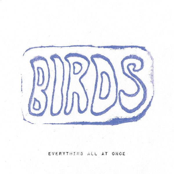 Birds Everything All At Once Colored Vinyl