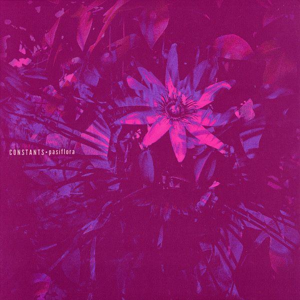 Constants Pasiflora Colored Vinyl