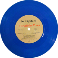 Foo Fighters -For All The Cows