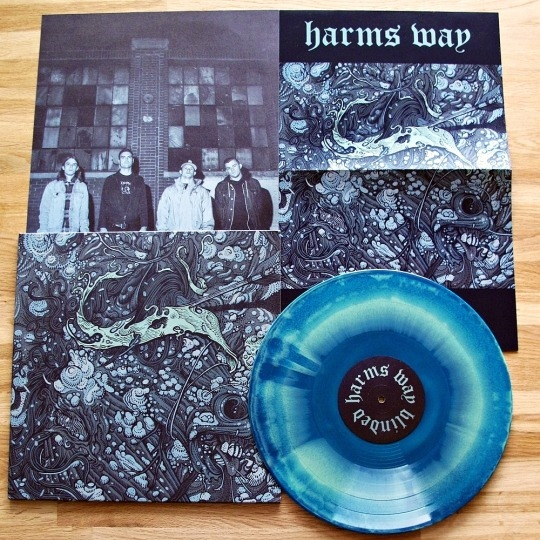 Harms Way - Blinded