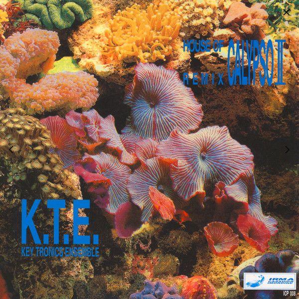 Key Tronics Ensemble - House Of Calypso II (Remix)