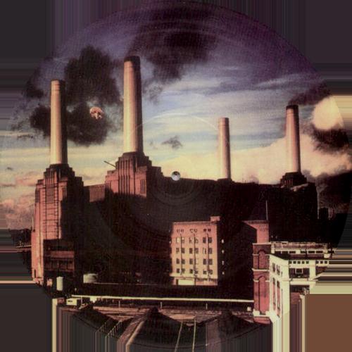 Pink Floyd -Animals