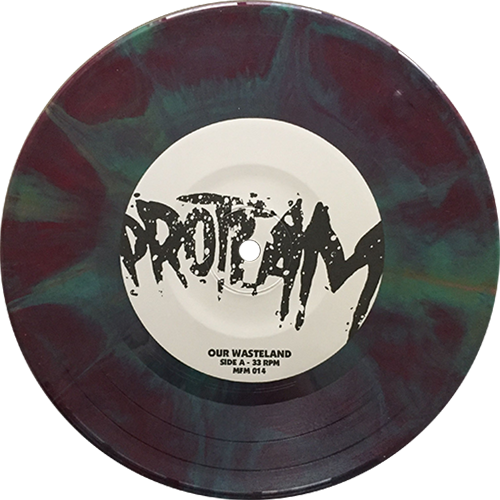 ProTeam -Our Wasteland