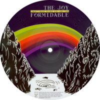 The Joy Formidable -I Don't Want To See You Like This