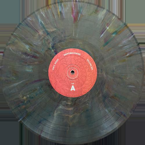 Various - Vinyl Moon Volume 009: Shifting States