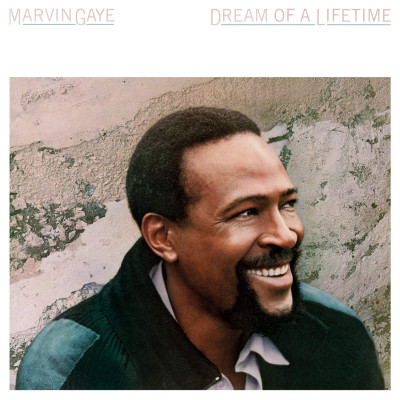 Marvin Gaye -Dream Of A Lifetime