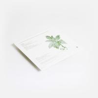Mort Garson - Mother Earth's Plantasia